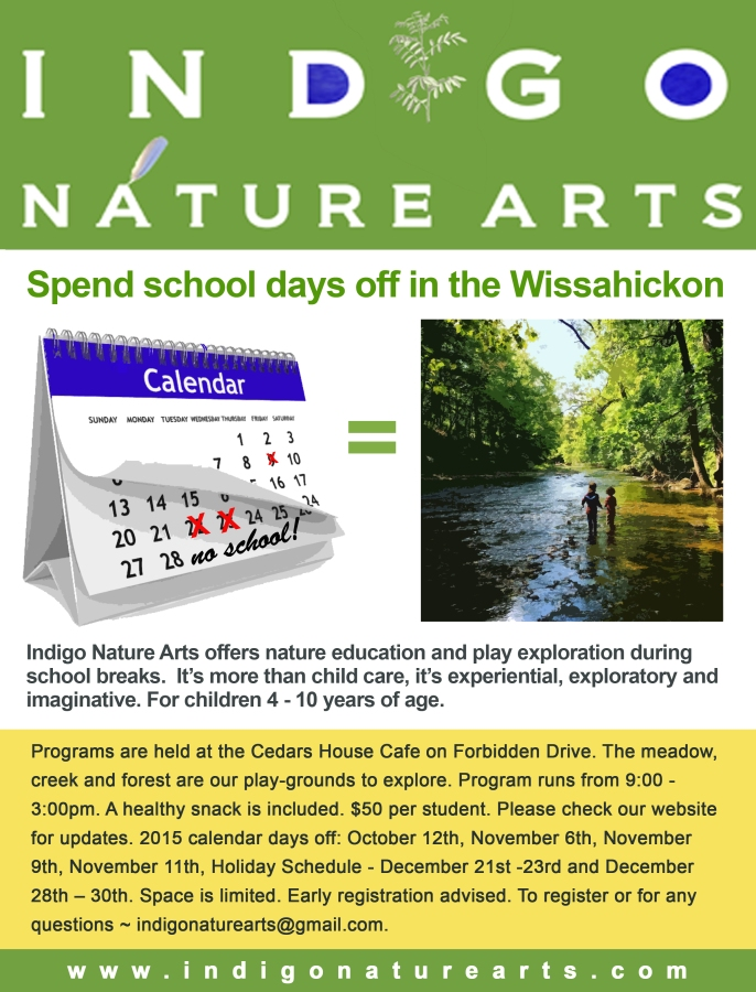 school-days-off-indigo-nature-arts copy